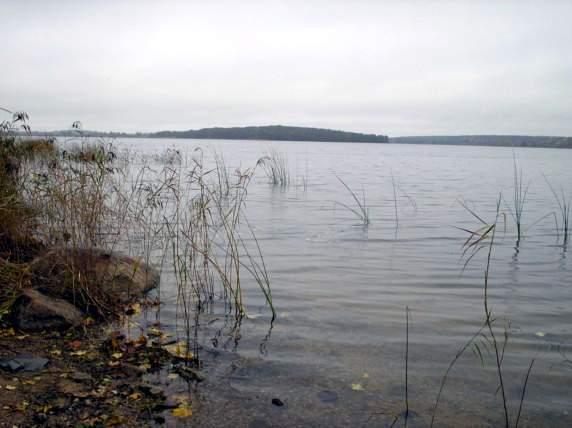 Аномальные зоны Ленинградской области