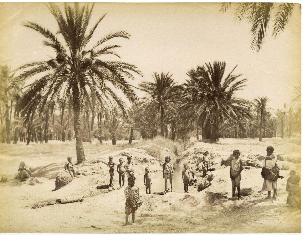 1875. Арабские дети