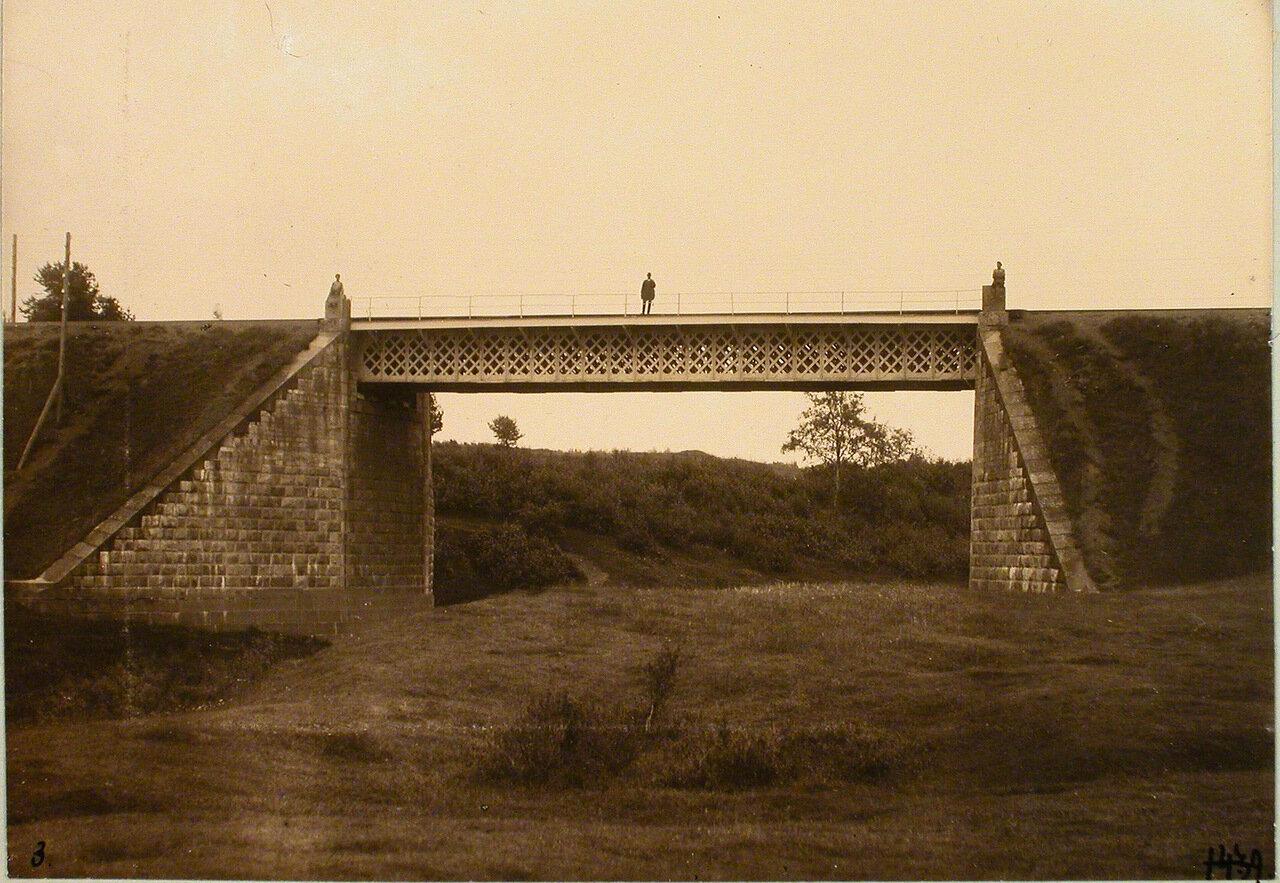 Псковская губерния. Станция Торошино. Вид железнодорожного моста на 236-й версте