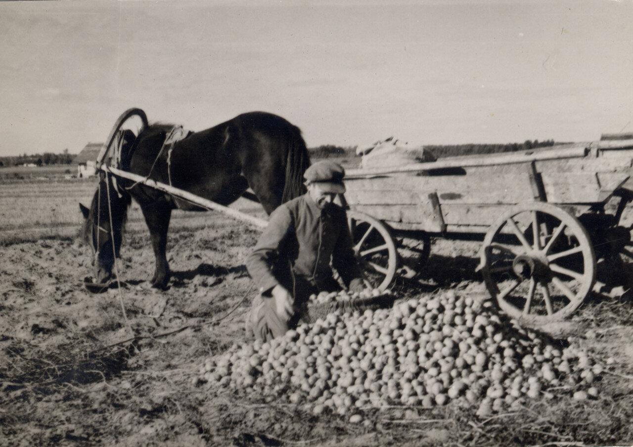 Поработаем.... 1936