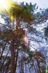 Оптическая-дифракция-света.jpg
