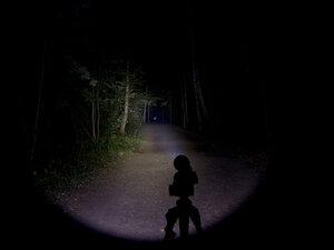 Подствольный дальнобойный охотничий фонарь - EagleTac S200C2 XM-L2 U2 светит так: Средний режим, iso 80