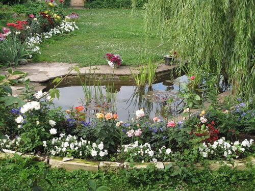 У прудика райского садика