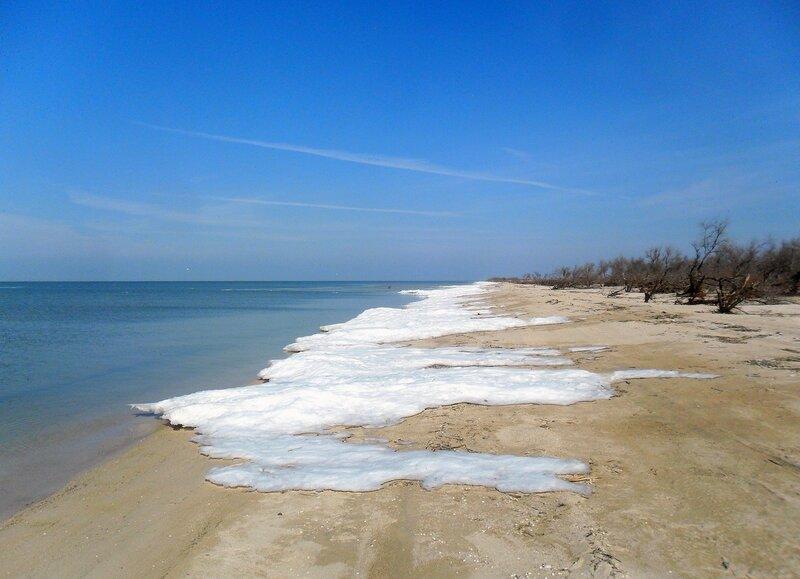 Берег, льды, у моря ... SAM_5662.JPG