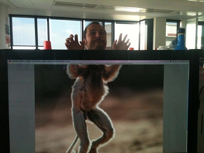 Office Safari280.jpg