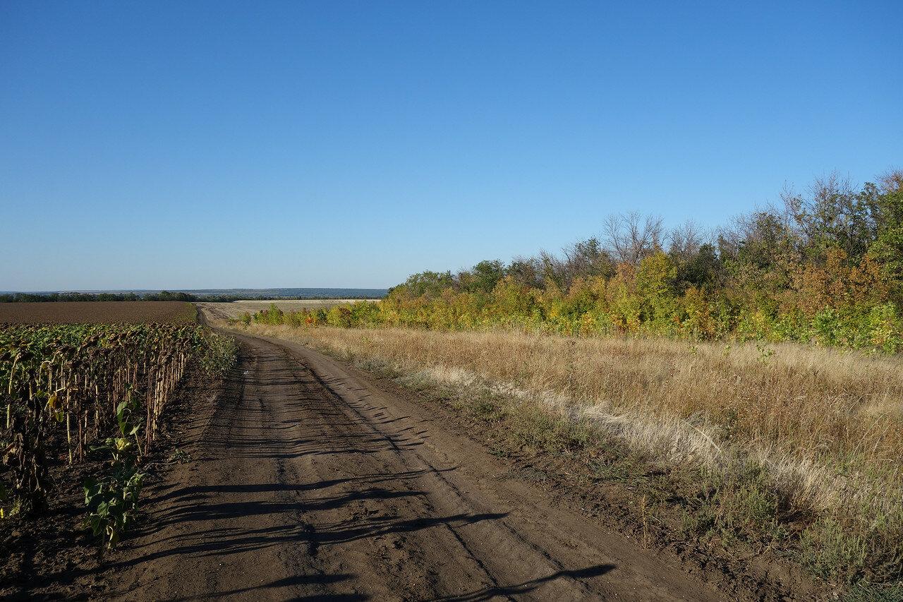 государственная защитная лесополоса Белая Калитва - Пенза