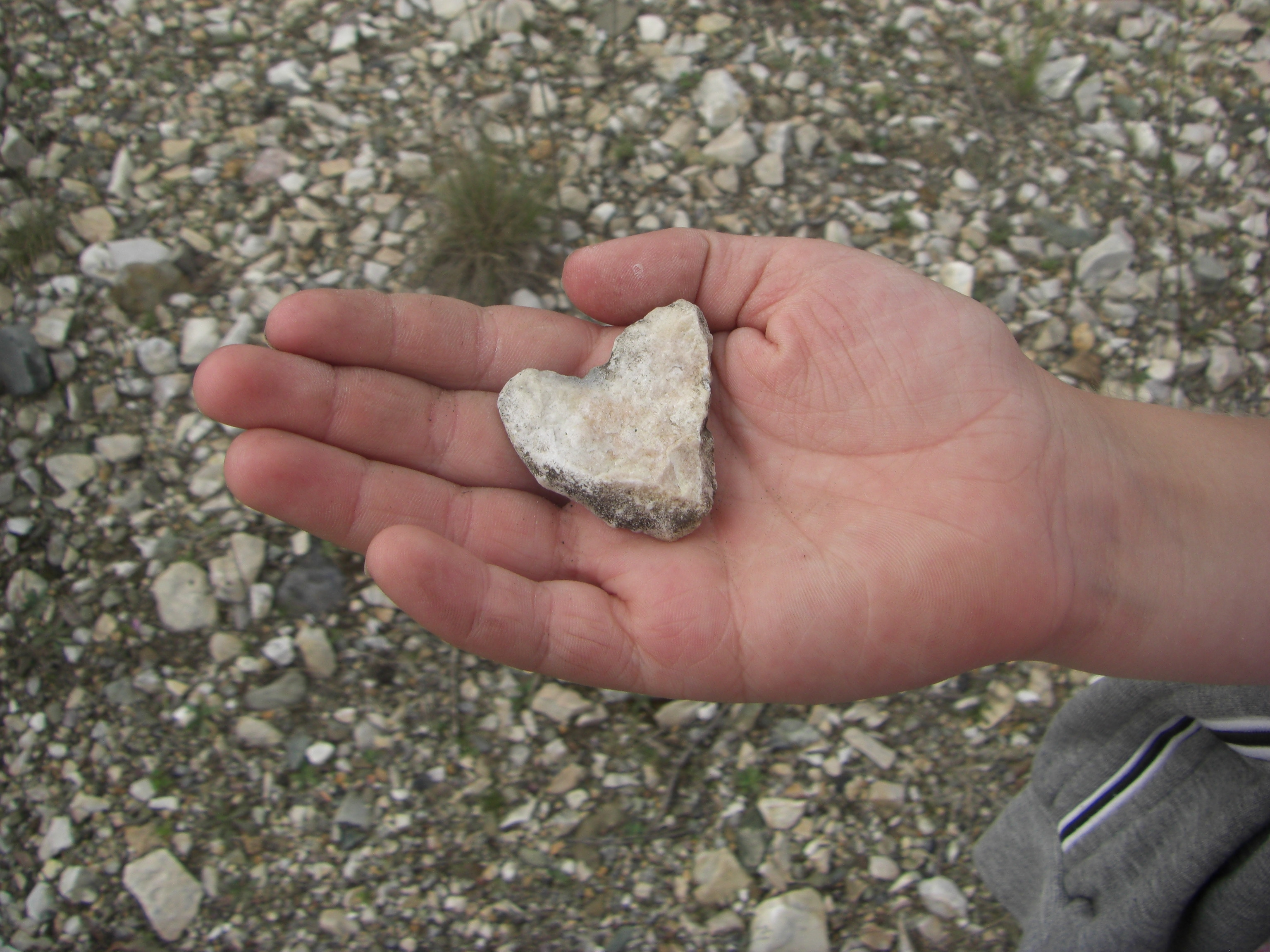 Сердце-камень
