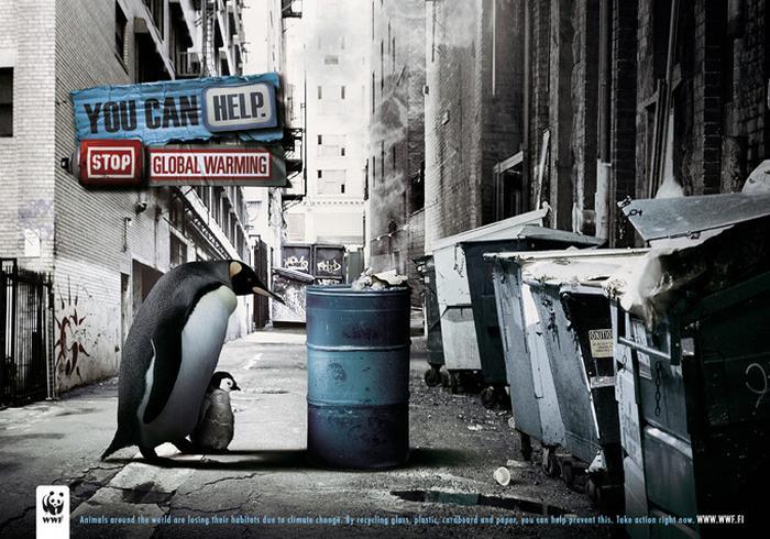 Животные без среды обитания