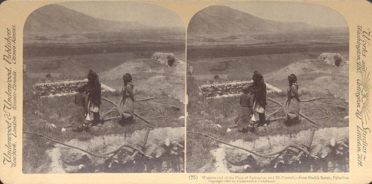 Вид на гору Кармель. 1900