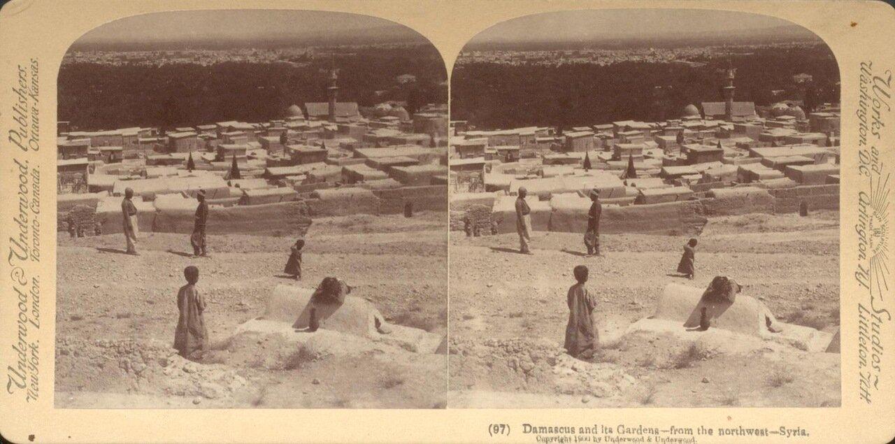Сирия. Дамаск и его сады. Вид с северо-запада. 1900