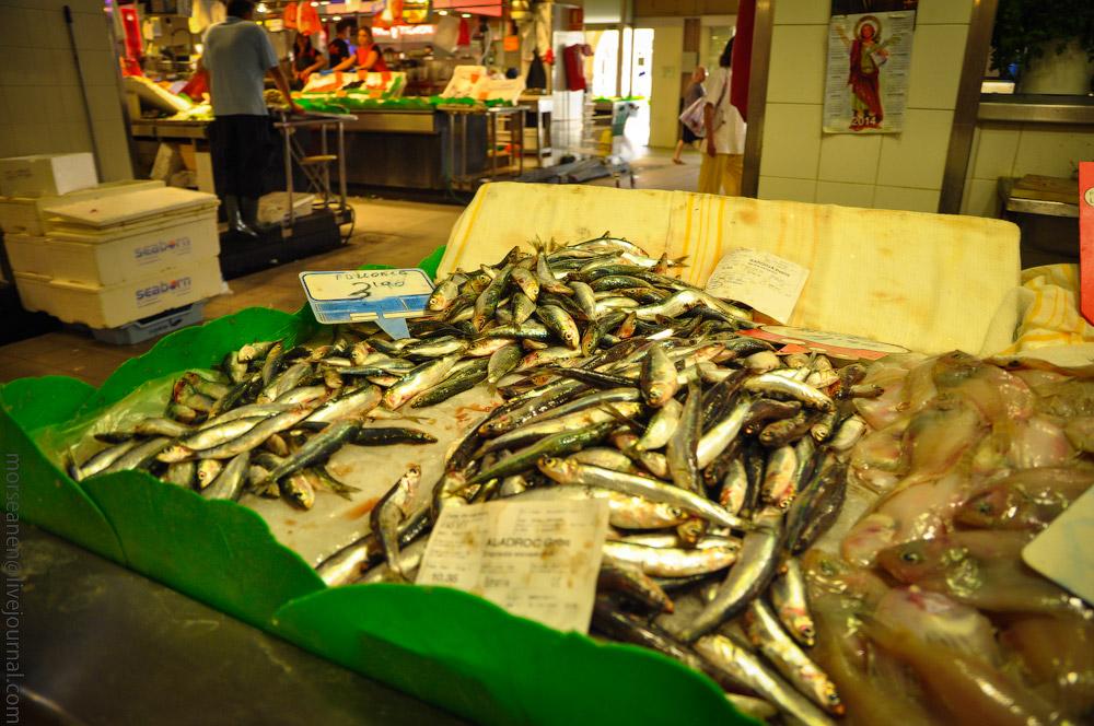 fischmarkt-mallorca-(17).jpg