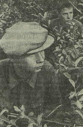 «Красная звезда», 20 августа 1941 года, советские партизаны, партизаны 1941
