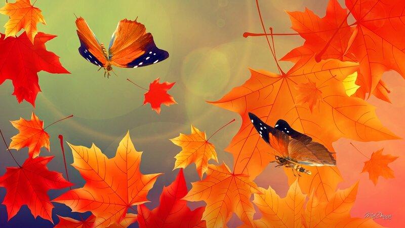 Обои на рабочий стол осенние листья