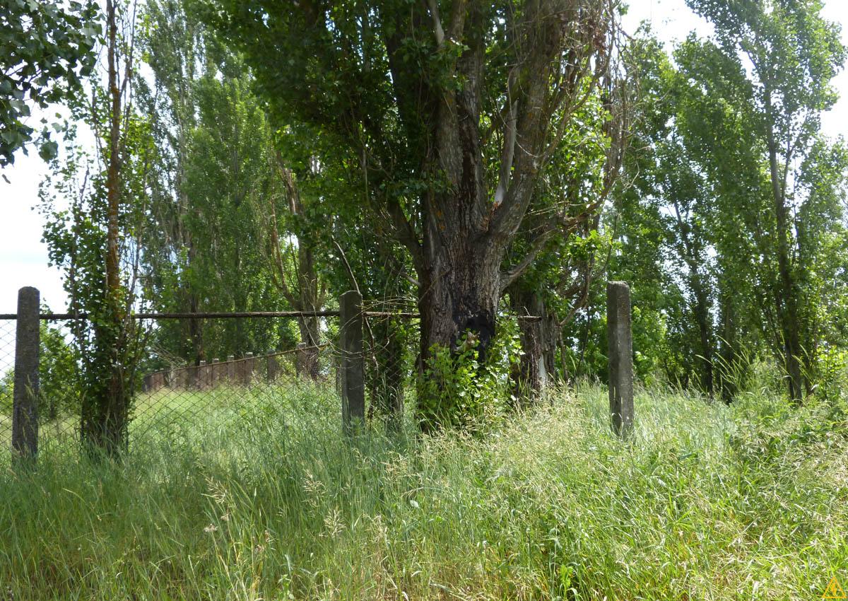 Заброшенный совхоз «Киевский»
