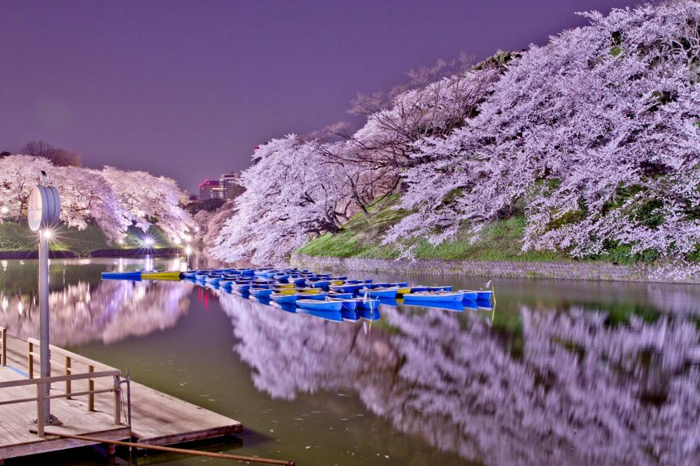красивая набережная города японии востока фото росла так