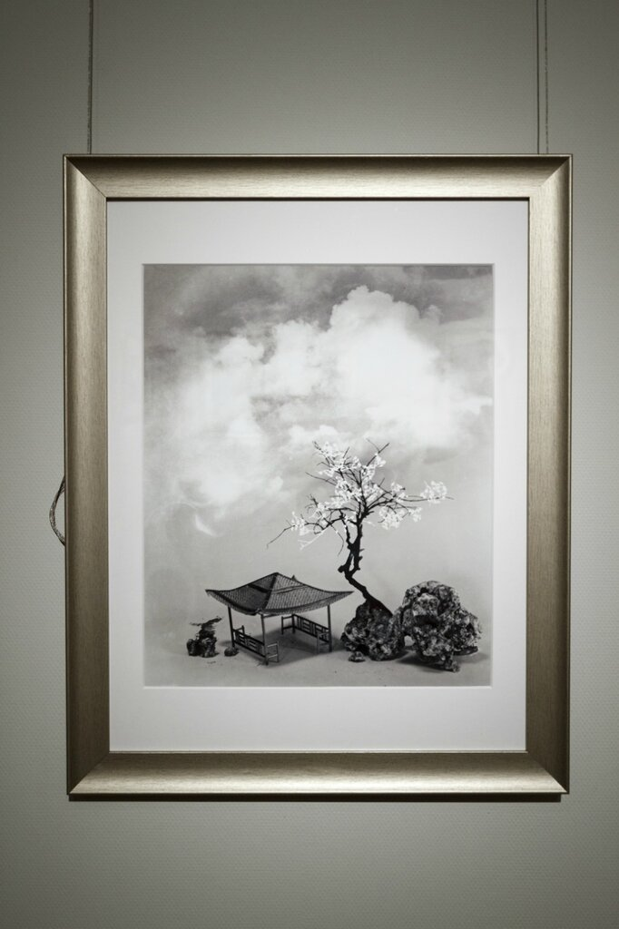Лан Цзиншань. Цветочные и розовые облака