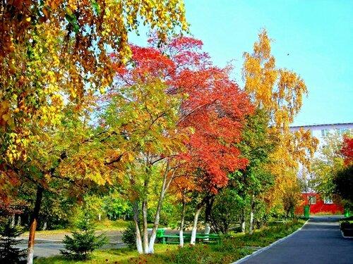 Зелёно-красно-золотая осень