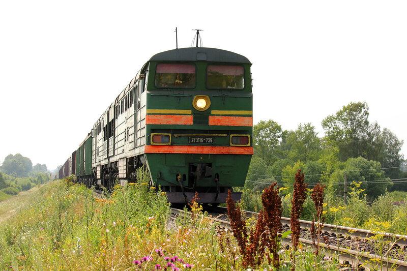 2ТЭ116-739 из Муравьёво