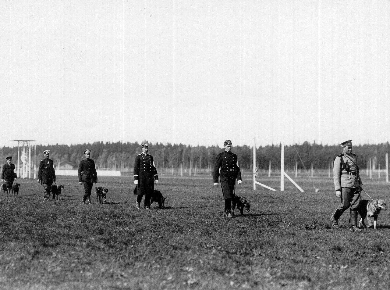 09. Владельцы собак с собаками на поводках проходят вдоль трибун