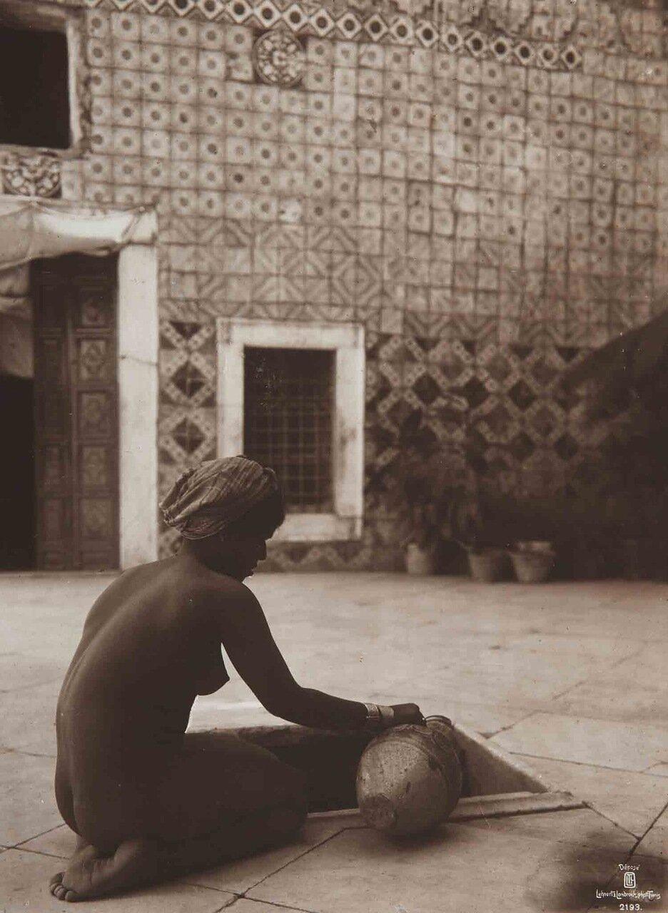 Тунис. 1904