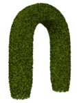 R11 - Garden Plant 2014 - 129.png