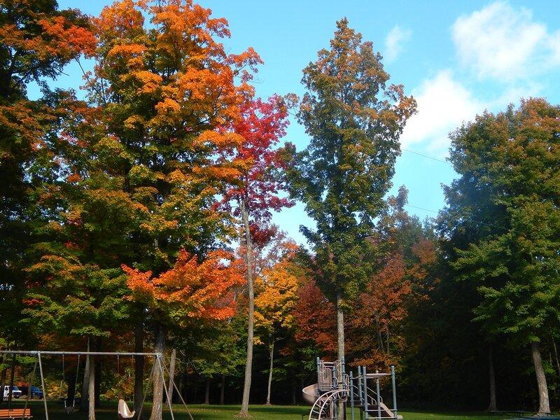 Осень-2014.