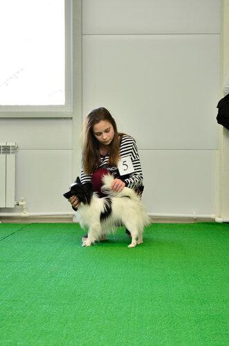 https://img-fotki.yandex.ru/get/6739/16062974.7/0_9d8f6_38f0ca02_L.jpg