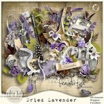 SK Dried Lavender
