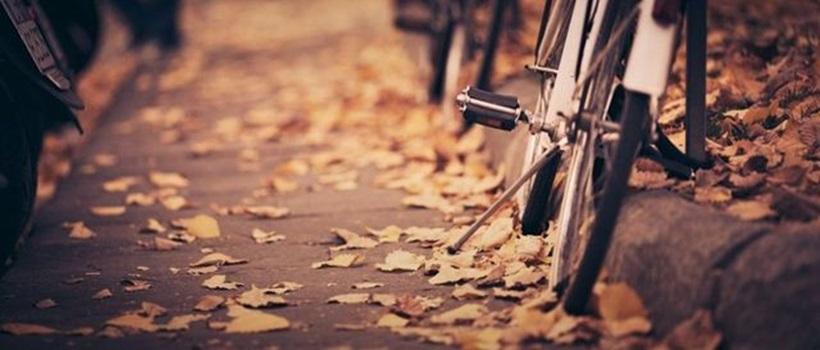 Бокэ эффект (красивые фотографии) 0 17995a 997e0d0a orig