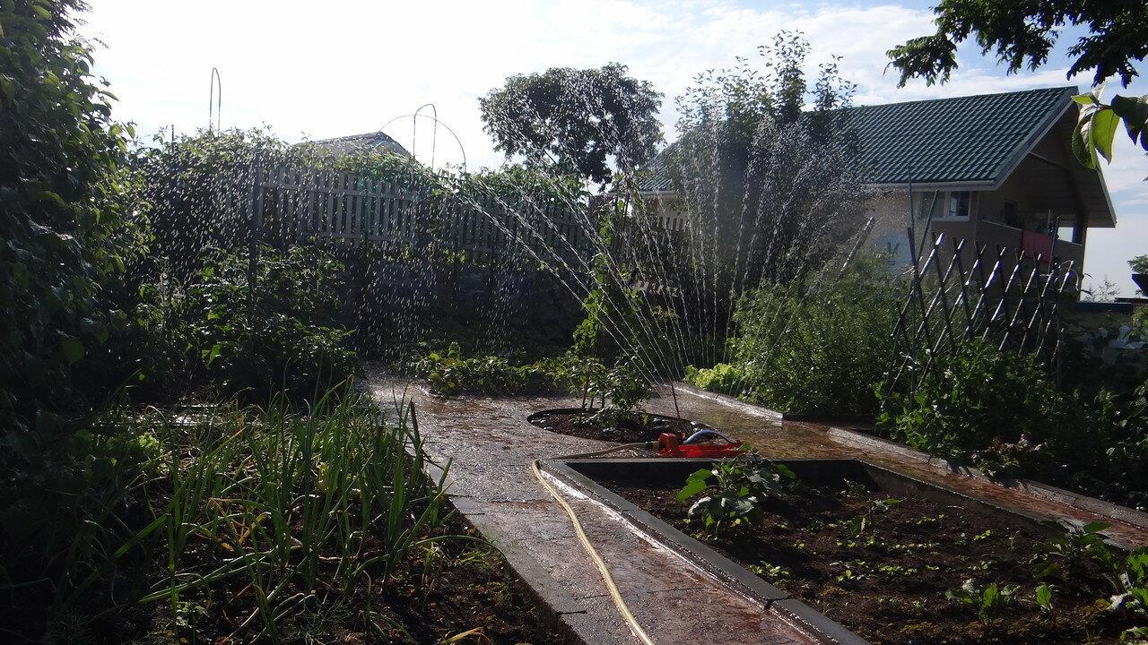 Сад и фонтан