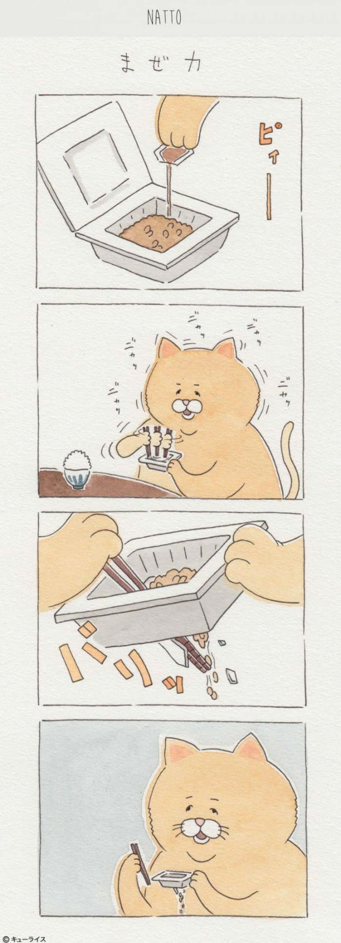 Food Fails - Les hilarantes aventures culinaires d'un chat japonais