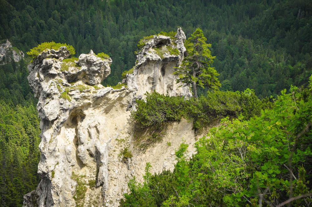 Alpspitze-(20).jpg