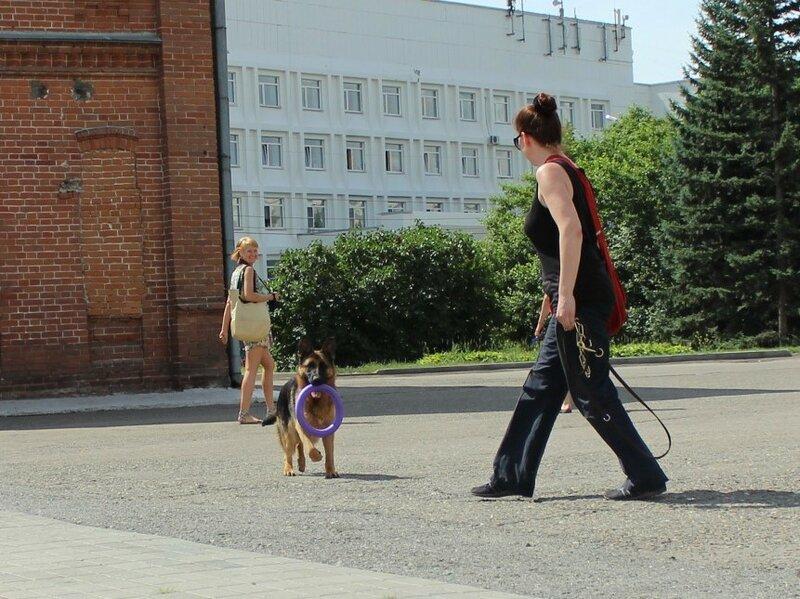 http://img-fotki.yandex.ru/get/6740/134559744.21/0_cbbdd_bb30ddb7_XL.jpg