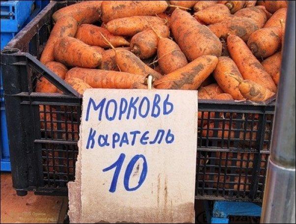 Переселенцы с Донбасса получили деньги от ООН - Цензор.НЕТ 5042