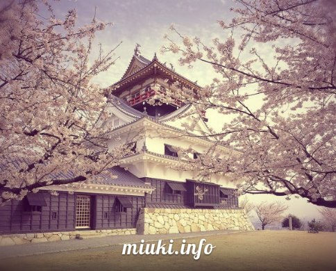 Храм на фоне цветущей сакуры
