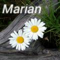 ������� �� ������� ������ ����� (Marian)