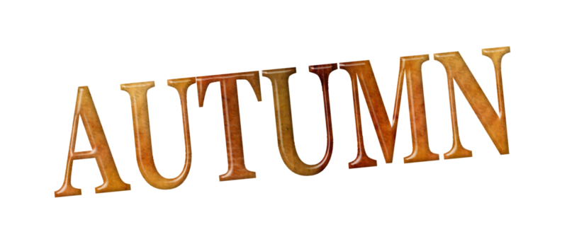 StarLightDesigns_AutumnSunshine_elements (70).png
