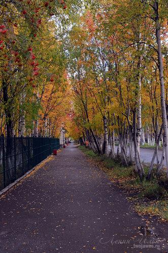 Фотография Инты №7249  Пешеходная дорожка восточном направлении вдоль забора Полярной 18 16.09.2014_12:19