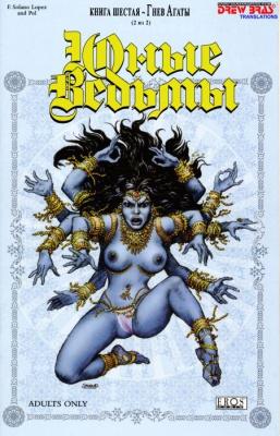 Журнал Журнал Юные Ведьмы 6. Гнев Агаты