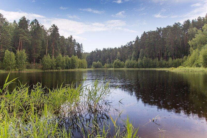 Карстовое озеро Чваниха («Провалы») в Медведском бору