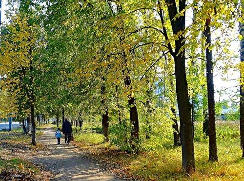 Прогулка по осенней городской аллее.