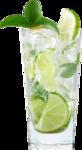 Lemony-freshness_elmt (64).png