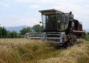 Фермеры из Молдовы требуют более существенных компенсаций