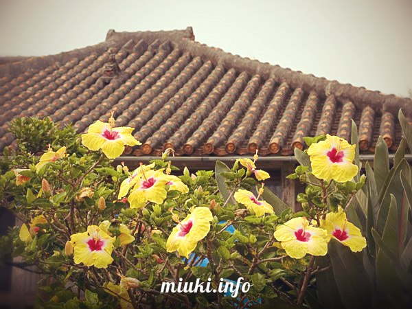 Уникальные черепичные крыши Окинавы
