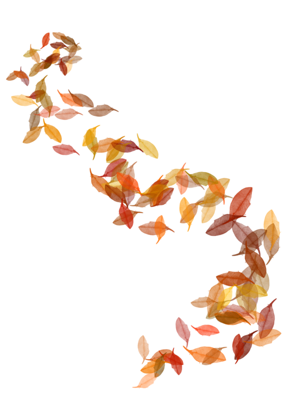StarLightDesigns_AutumnSunshine_elements (74).png