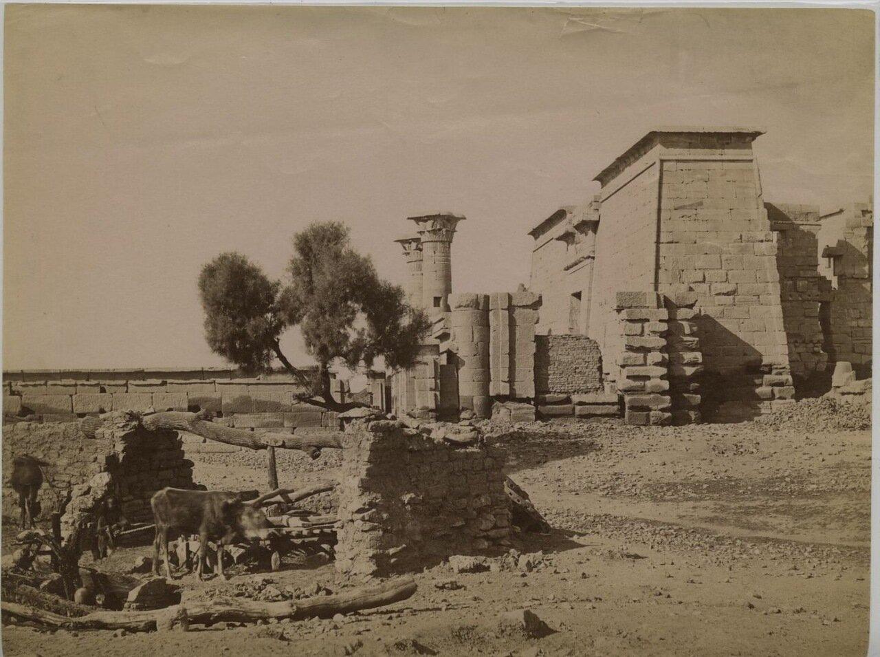 Луксор. Мединет-Абу. 1875