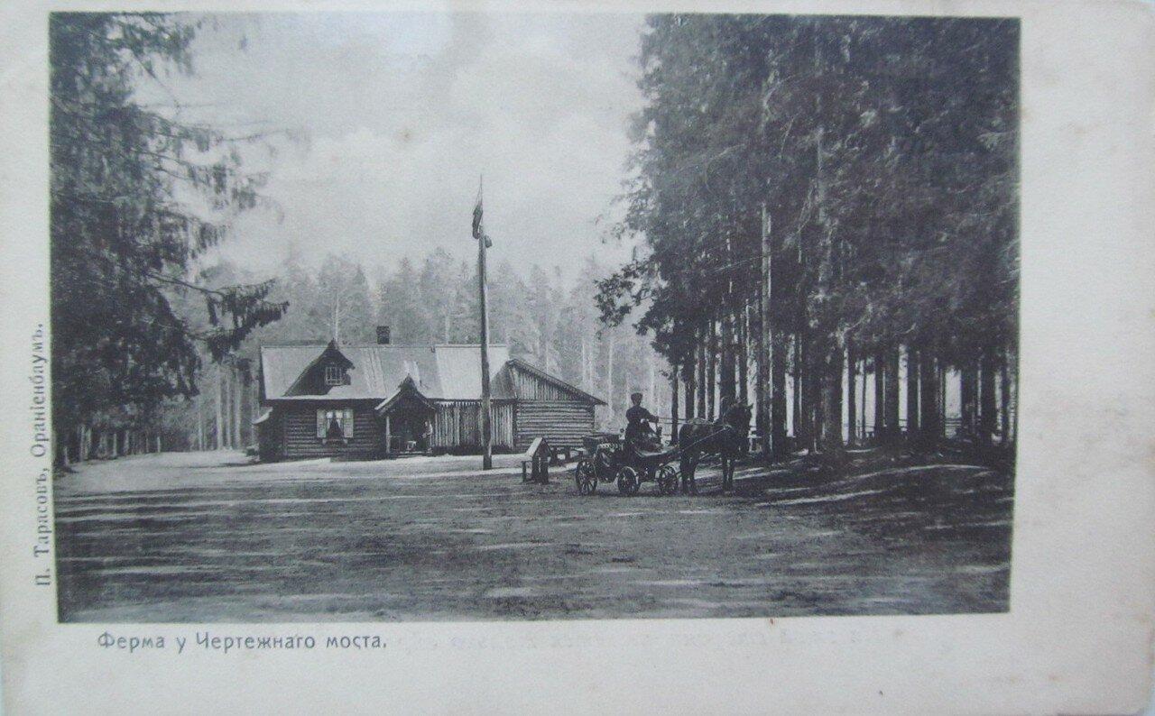 Ферма у Чертежного моста