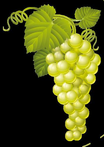 виноград (34).png