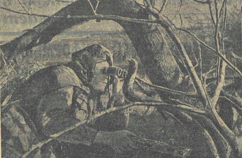 «Красная звезда», 16 августа 1942 года