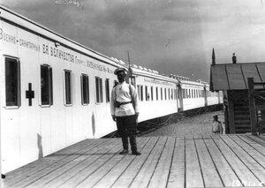 Санитарный поезд у перрона Царскосельского вокзала